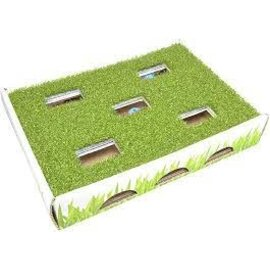 Petstages Petstages Grass Patch Hunting Box