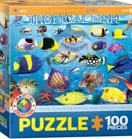 Eurographics Tropical Fish 100pc