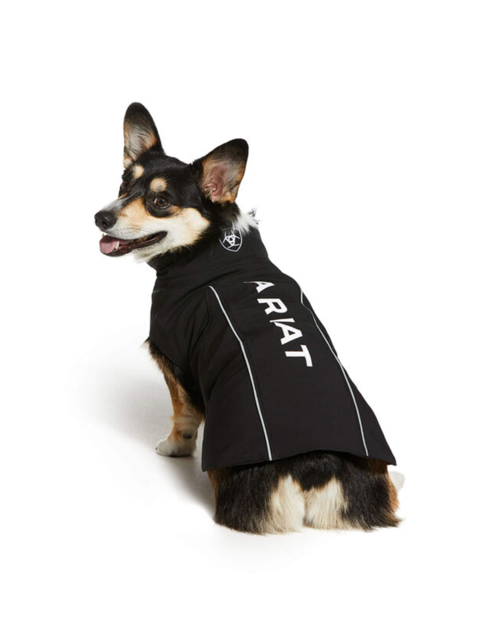 Ariat Ariat Team Softweight Dog Jacket