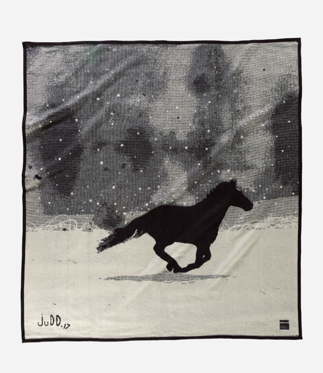Pendleton A Horse Called Paint Blanket: Throw
