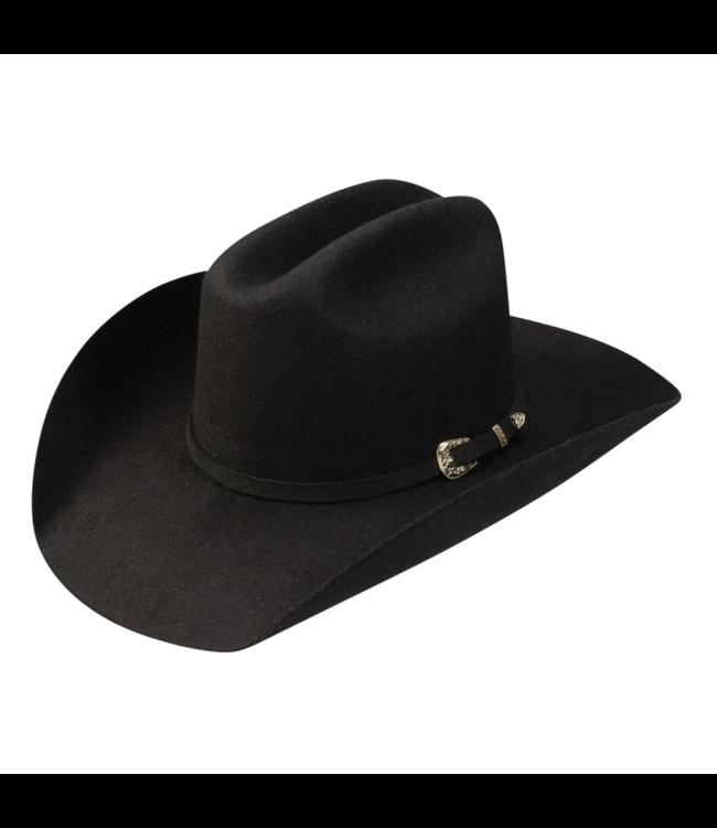 Stetson Giddy Up Youth Felt Hat, Black: OSFM