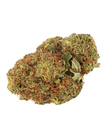 Daily Special Daily Special Indica
