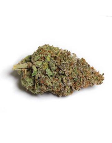Kiwi Cannabis Cali-O