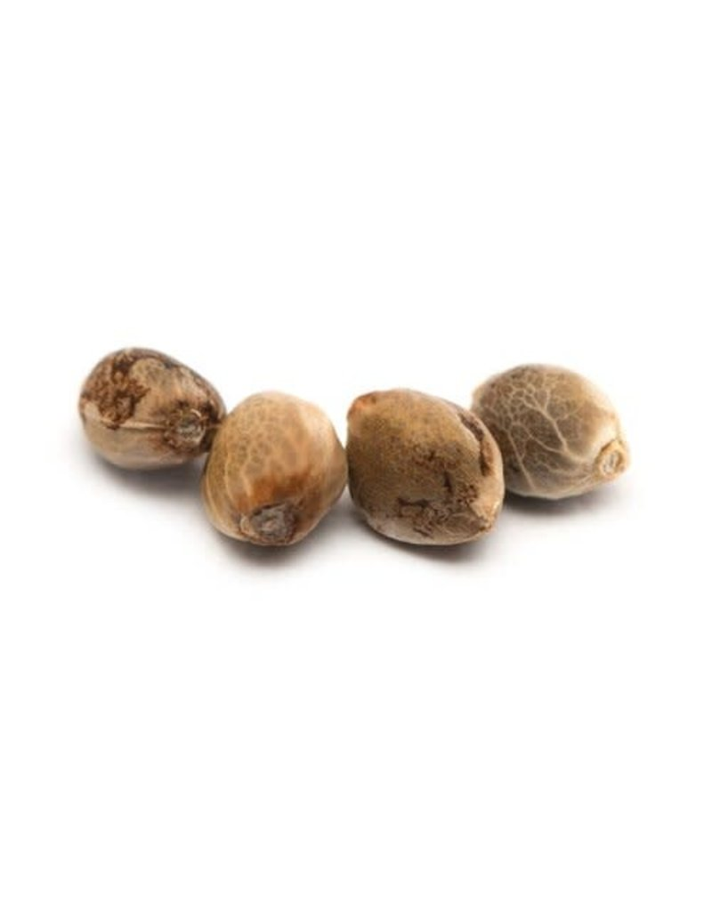 Tweed Bakerstreet Seeds