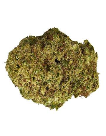 Color Cannabis White Shark