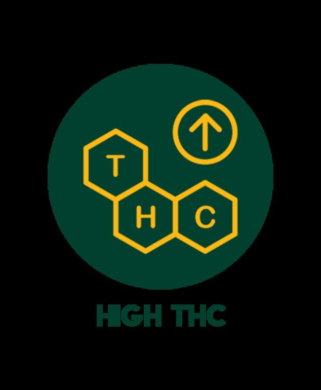 High THC