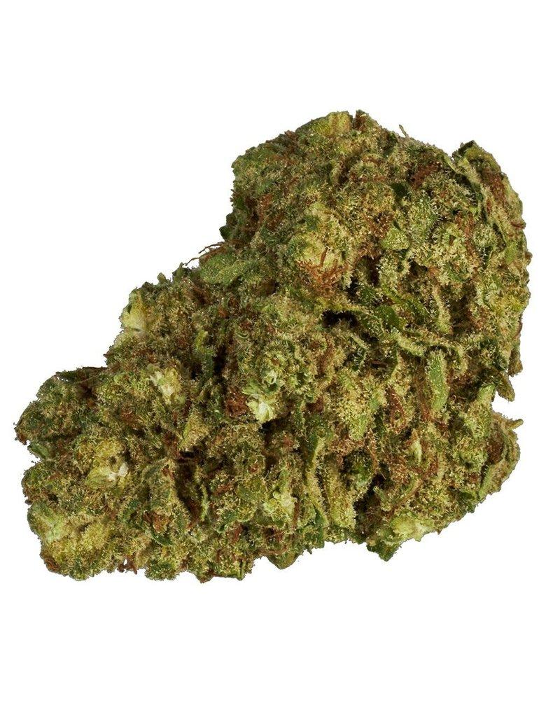 Color Cannabis Ghost Train Haze