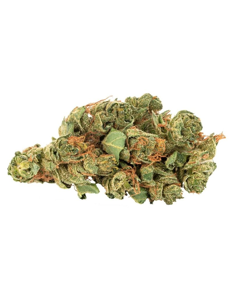 Daily Special Daily Special Sativa