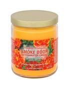 Smoke Odor Eliminator Smoke Odor Candle