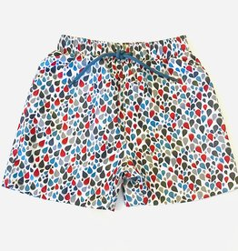 Leo and Zachary Swim Trunks 2/3-12