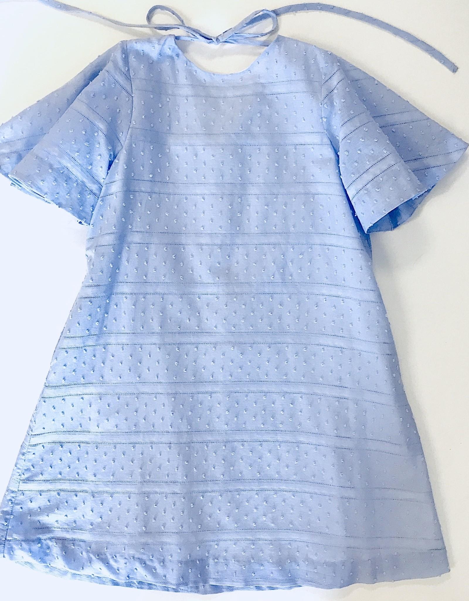Gabby Blue Swiss Dot Dress