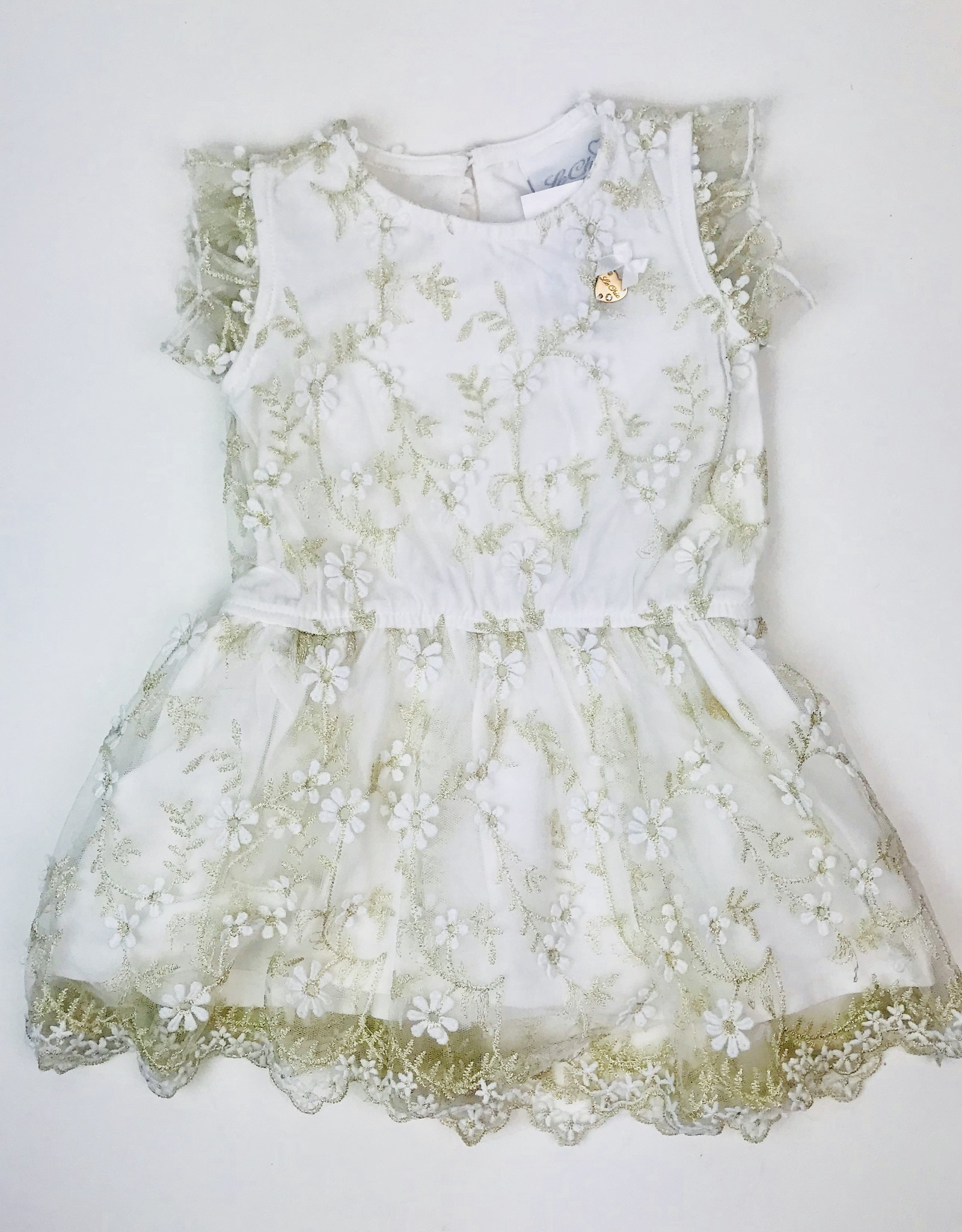 Le Chic Cream Tulle Gold Embroidered Flowers