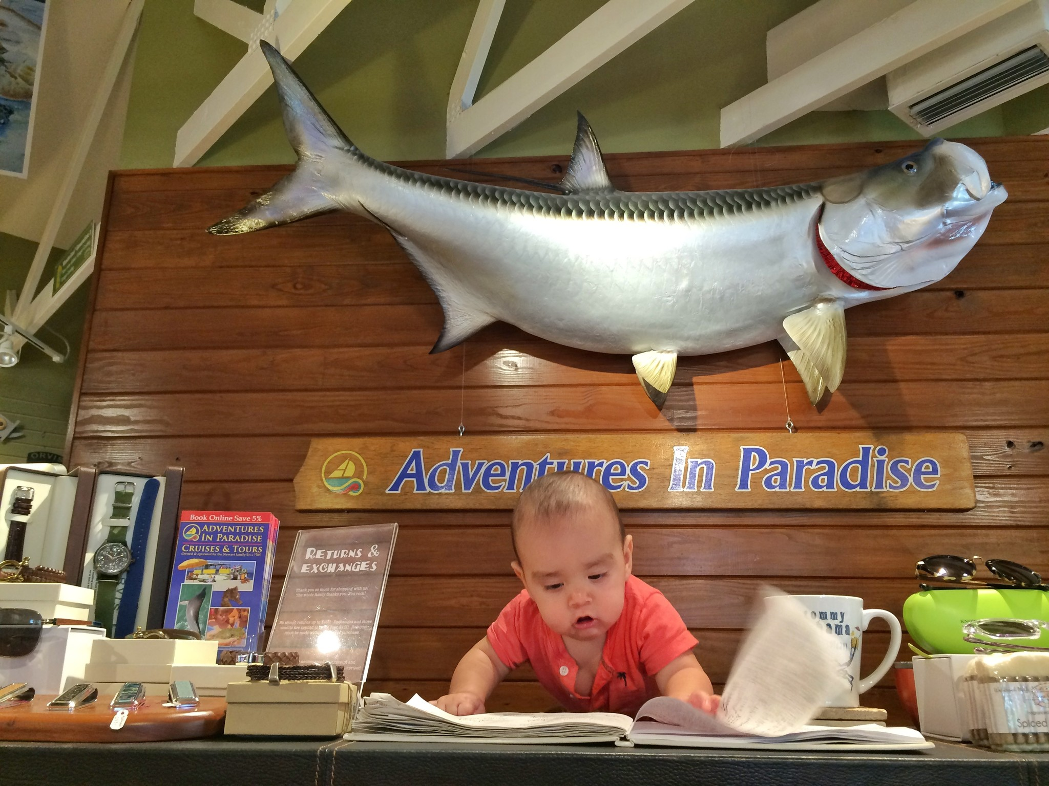 Adventures in Paradise Outfitters Support Team