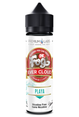 Dr. Fog Ever Cloud