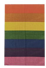 "24"" x 36"" Tapestry - Pride Rainbow"
