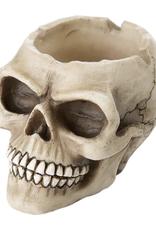 """3"""" Skull Ashtray"""
