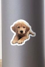 Golden Retriever Puppy Sticker