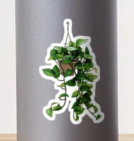 Hanging Pothos Plant Sticker