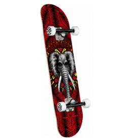"""Powell Peralta POWELL PERALTA COMPLETE - VALLELY 8.25"""""""