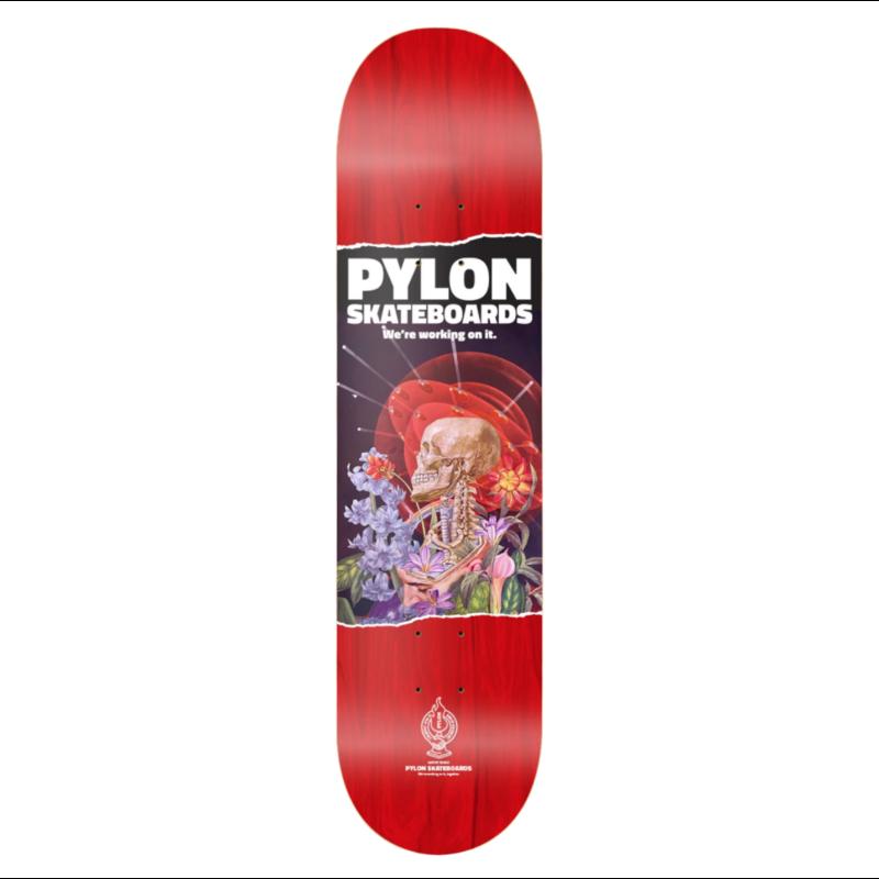 PYLON PYLON SPACE BRAIN 8.38