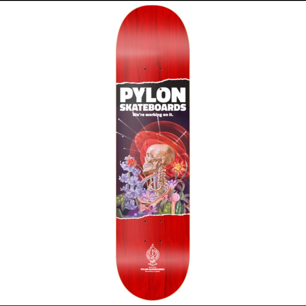 PYLON PYLON DECK SPACE BRAIN 8.38
