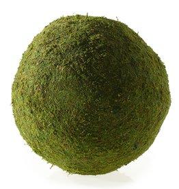 "Moss Sphere 15"""