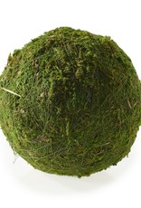 "Moss Sphere 4"""