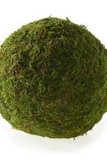 "Moss Sphere 6"""