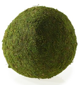 "Moss Sphere 10"""