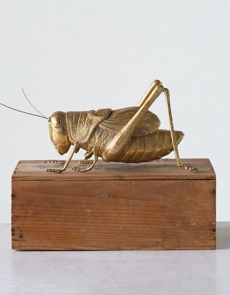 Gold Cricket