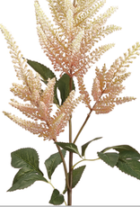 Astilbe Spray  Pink Cream