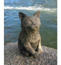 Greenman Kitten