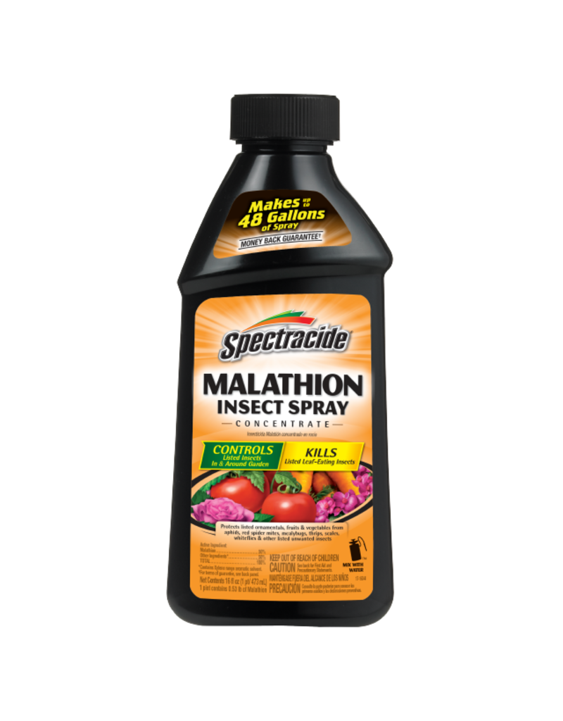 Spectracide MALATHION INSECT SPRAY CONC 16oz