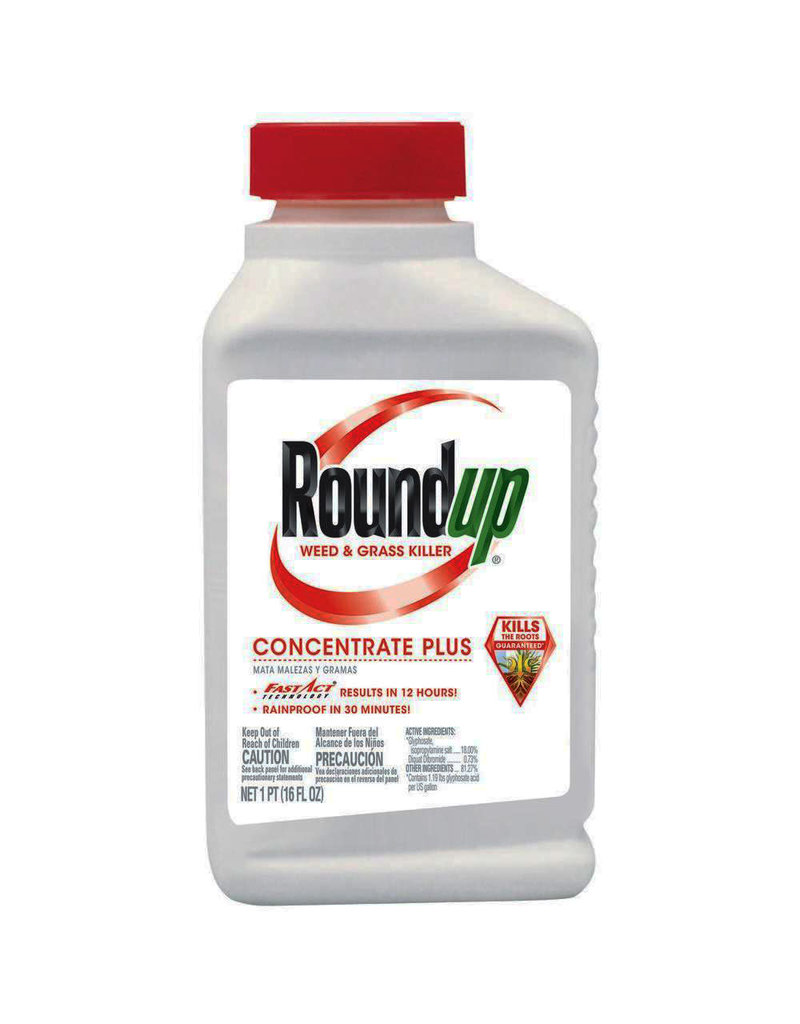Monsanto Roundup Concentrate 16oz