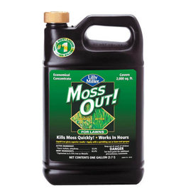 Lilly Miller Moss Out For Lawns conc. gallon
