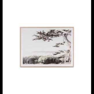 Framed Print - Californian Coast