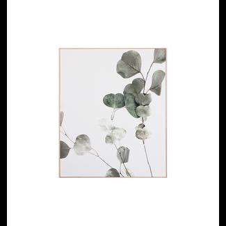 Eucalyptus Branch 1 - Framed Canvas