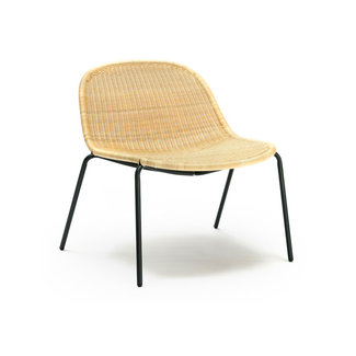 Feelgood Designs Edwin Lounge Chair - Wheat (Indoor / Outdoor)
