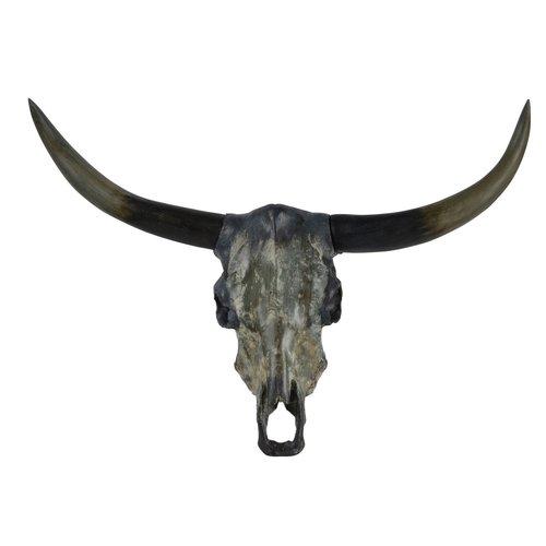 Crâne décoratif mural en résine fini gris Longhorn