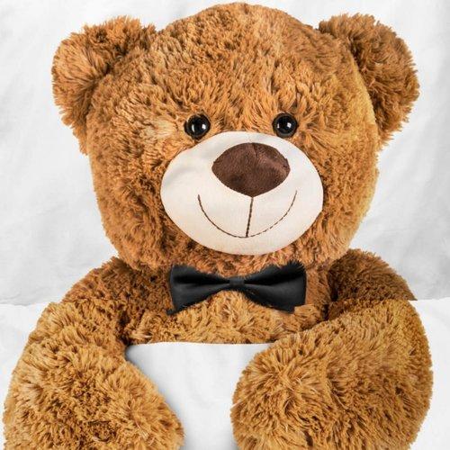 Ensemble de housse de couette Teddy l'Ours
