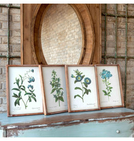 Blue Botanical Framed Prints (Set of 4)