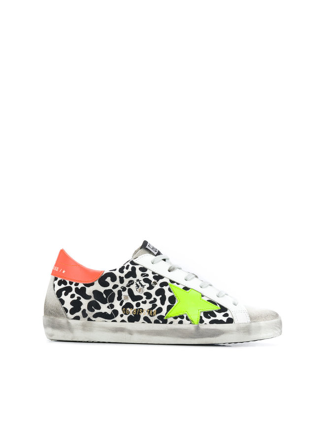 Superstar Sneakers in Leopard