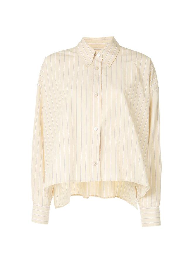 Long Sleeve Striped Shirt in Cotton/Silk