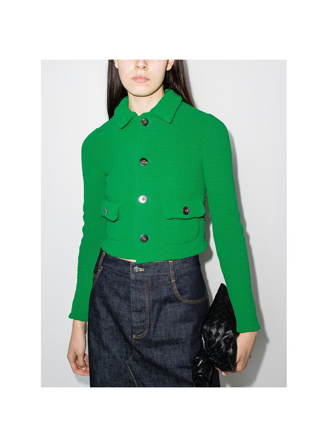 Cropped Buttoned Jacket in Parakeet Green