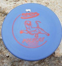 Innova Polecat - Purple