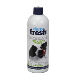 Envirofresh Slurp'N Fresh Dog Oral Hygiene Water Additive 400ml
