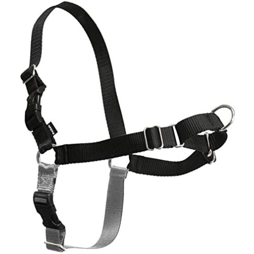 Easy Walk Harness Medium/Large
