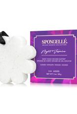 Spongelle Night Jasmine   Boxed Flower