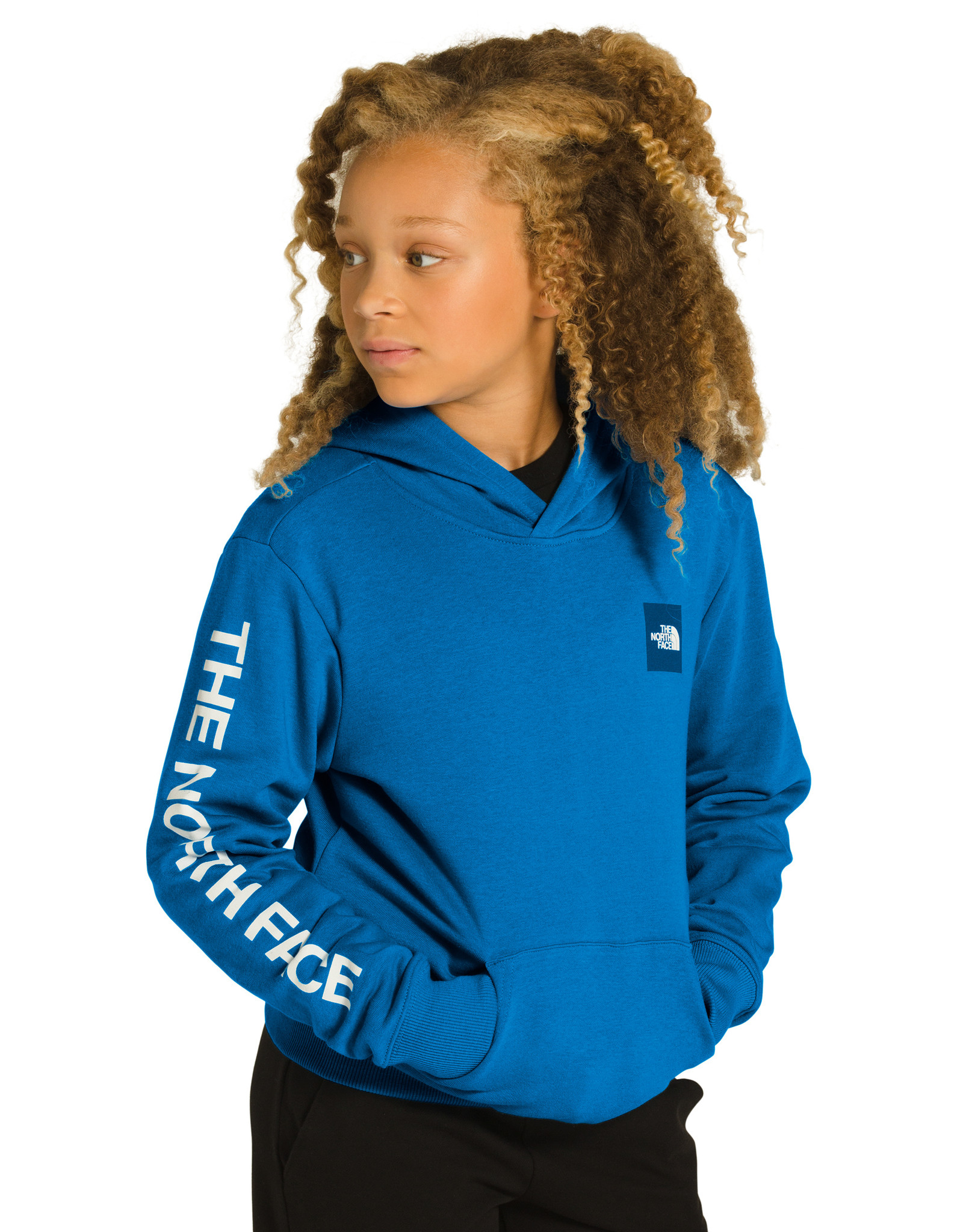 The North Face The North Face Youth Logowear Pullover Hoodie - S2020