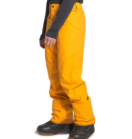 The North Face The North Face Men's Freedom Pant -W2020